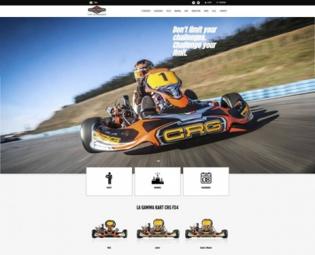 On line il sito Briggs Kart Championship